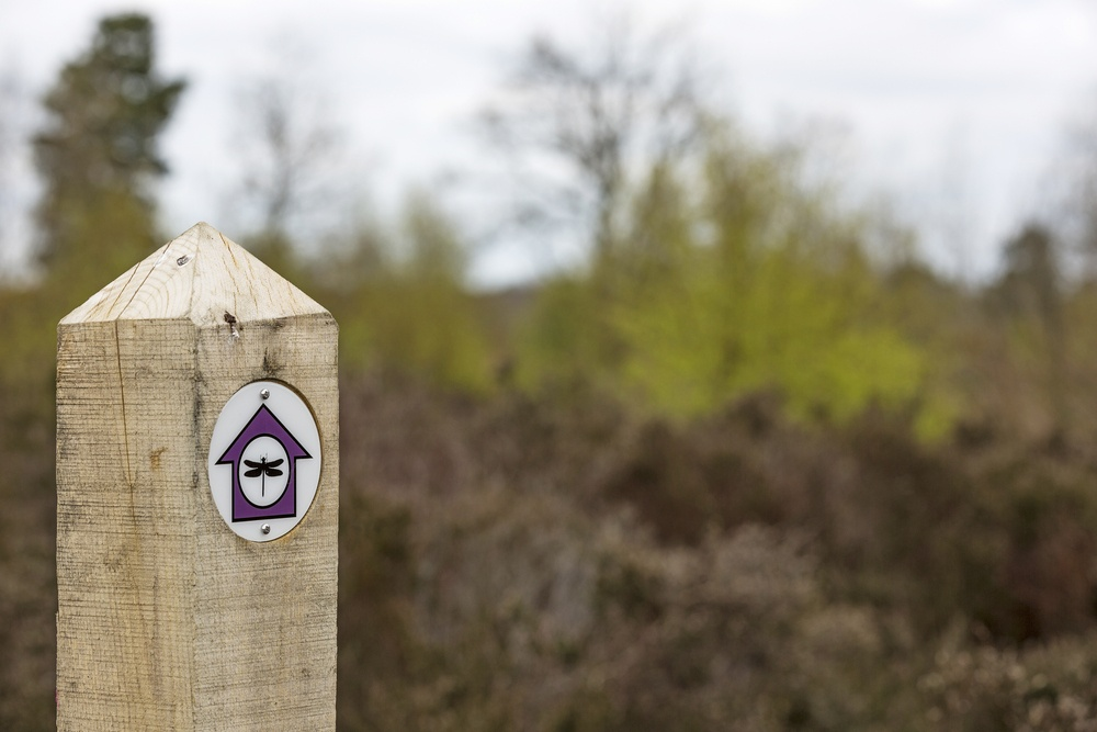 Wooden hiking trail marker in a forest
