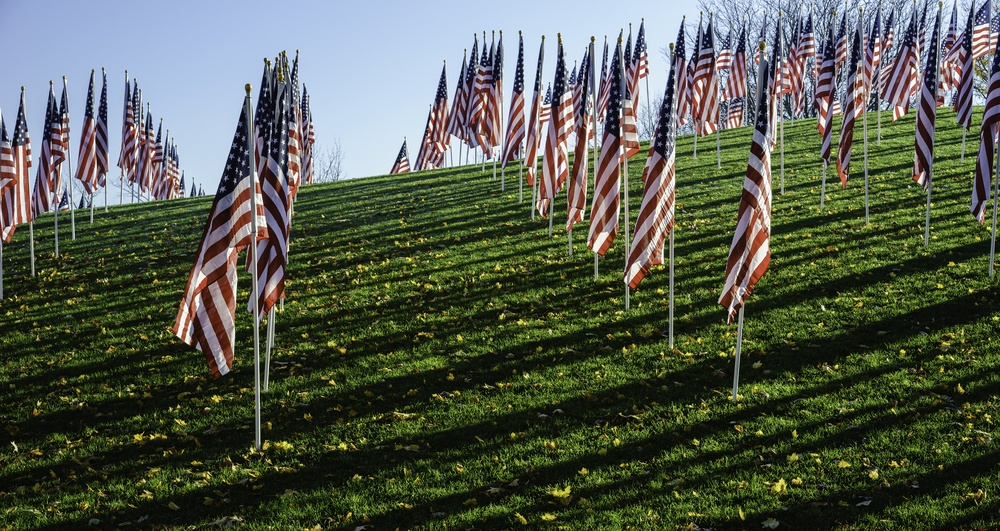 Display of many American flags (for observation of a federal holiday) with long parallel shadows early in the morning